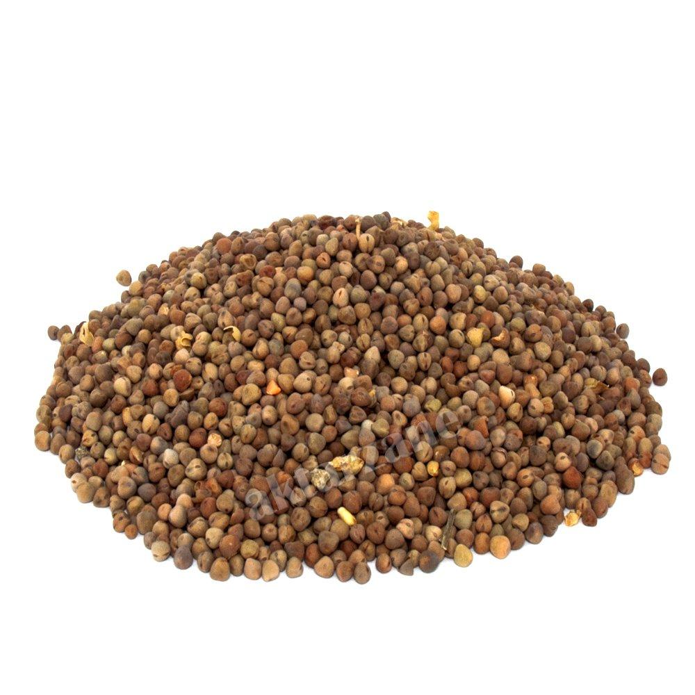 burcak-tohumu-500-gr-2127-jpg